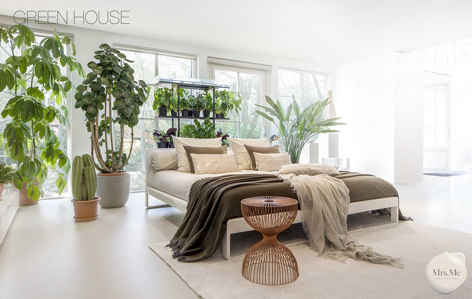 MrsMe-TheGlassHouse-GreenHouse