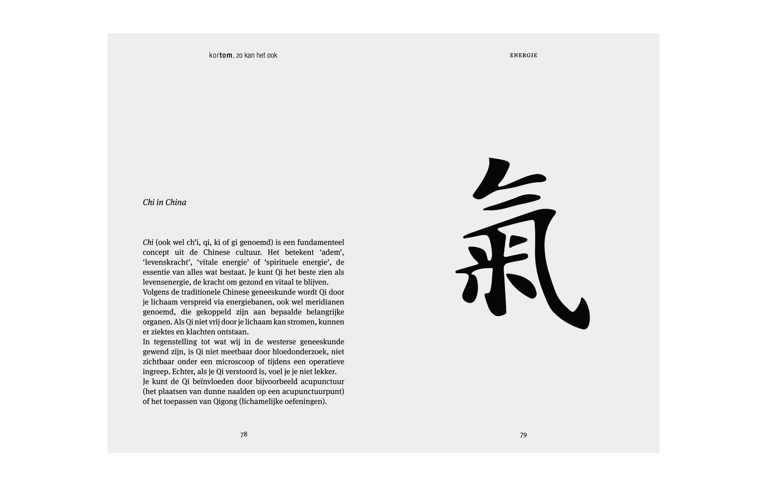 StudioErnst-TomTichelaar-boek-Zokanhetook-7879